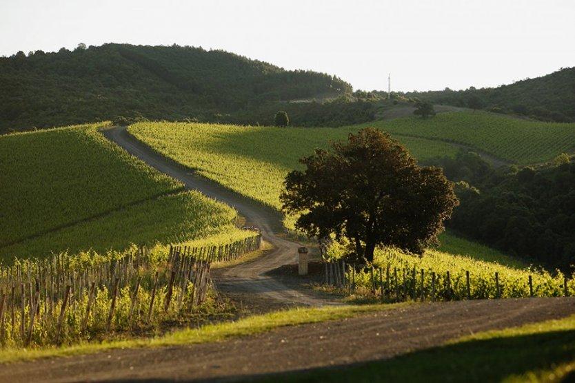 Toscana - Amanhecer